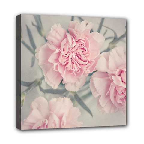 Cloves Flowers Pink Carnation Pink Mini Canvas 8  X 8