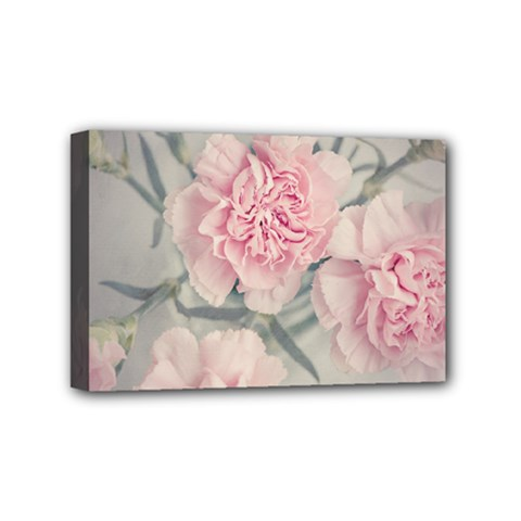 Cloves Flowers Pink Carnation Pink Mini Canvas 6  X 4