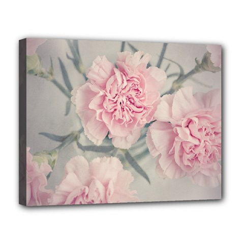 Cloves Flowers Pink Carnation Pink Canvas 14  X 11