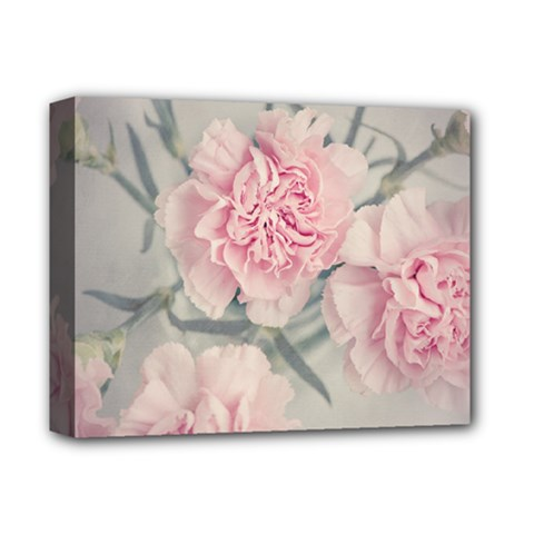 Cloves Flowers Pink Carnation Pink Deluxe Canvas 14  X 11