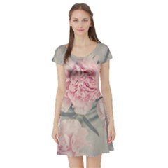 Cloves Flowers Pink Carnation Pink Short Sleeve Skater Dress