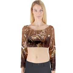 Ice Iced Structure Frozen Frost Long Sleeve Crop Top