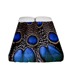 Feathers Peacock Light Fitted Sheet (full/ Double Size)