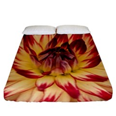 Bloom Blossom Close Up Flora Fitted Sheet (california King Size)