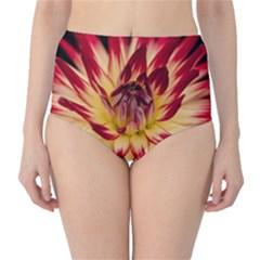 Bloom Blossom Close Up Flora High Waist Bikini Bottoms