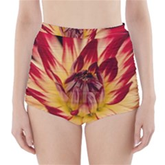 Bloom Blossom Close Up Flora High Waisted Bikini Bottoms