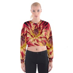 Bloom Blossom Close Up Flora Women s Cropped Sweatshirt