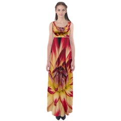 Bloom Blossom Close Up Flora Empire Waist Maxi Dress