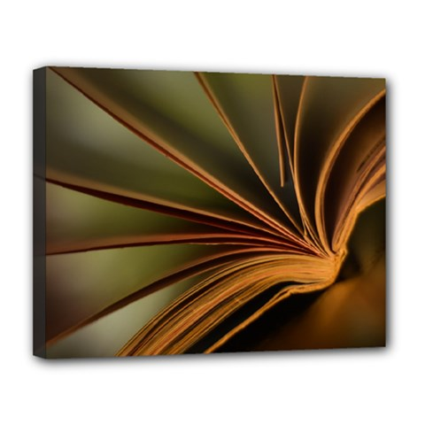 Book Screen Climate Mood Range Canvas 14  x 11