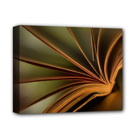 Book Screen Climate Mood Range Deluxe Canvas 14  X 11