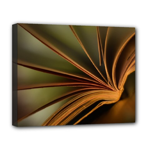 Book Screen Climate Mood Range Deluxe Canvas 20  X 16