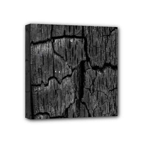 Coal Charred Tree Pore Black Mini Canvas 4  X 4