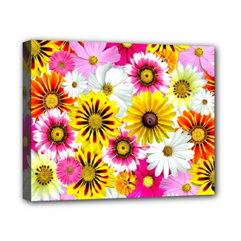 Flowers Blossom Bloom Nature Plant Canvas 10  X 8