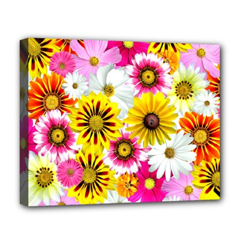 Flowers Blossom Bloom Nature Plant Deluxe Canvas 20  X 16
