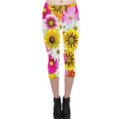 Flowers Blossom Bloom Nature Plant Capri Leggings