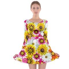 Flowers Blossom Bloom Nature Plant Long Sleeve Skater Dress