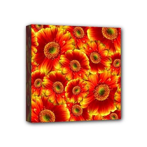 Gerbera Flowers Blossom Bloom Mini Canvas 4  X 4