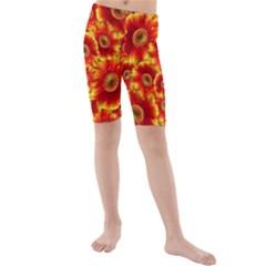 Gerbera Flowers Blossom Bloom Kids  Mid Length Swim Shorts