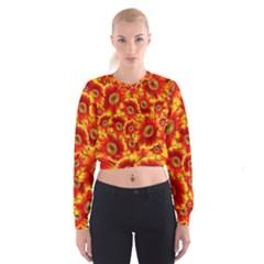 Gerbera Flowers Blossom Bloom Women s Cropped Sweatshirt