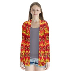 Gerbera Flowers Blossom Bloom Cardigans