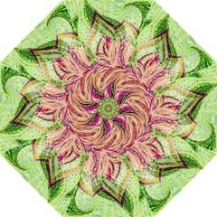 Colorful Design Acrylic Folding Umbrellas