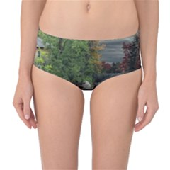 Landscape Summer Fall Colors Mill Mid Waist Bikini Bottoms