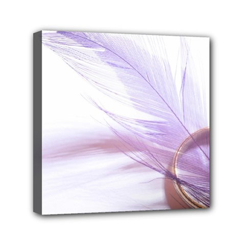 Ring Feather Marriage Pink Gold Mini Canvas 6  X 6