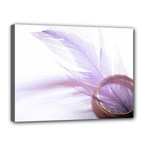 Ring Feather Marriage Pink Gold Canvas 16  X 12