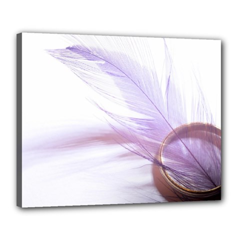 Ring Feather Marriage Pink Gold Canvas 20  X 16