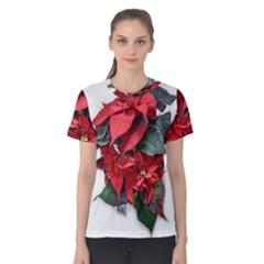 Star Of Bethlehem Star Red Women s Cotton Tee