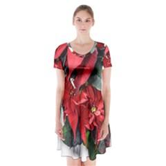 Star Of Bethlehem Star Red Short Sleeve V Neck Flare Dress