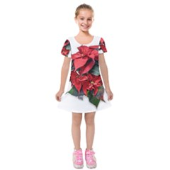 Star Of Bethlehem Star Red Kids  Short Sleeve Velvet Dress