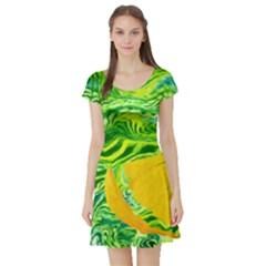 Zitro Abstract Sour Texture Food Short Sleeve Skater Dress