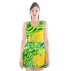 Zitro Abstract Sour Texture Food Scoop Neck Skater Dress