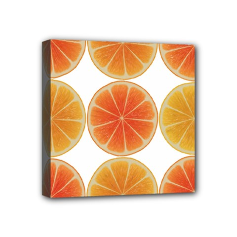 Orange Discs Orange Slices Fruit Mini Canvas 4  X 4