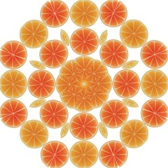 Orange Discs Orange Slices Fruit Hook Handle Umbrellas (small)