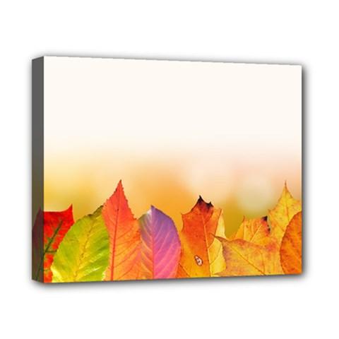 Autumn Leaves Colorful Fall Foliage Canvas 10  X 8