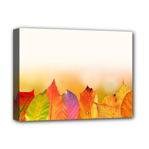 Autumn Leaves Colorful Fall Foliage Deluxe Canvas 16  X 12