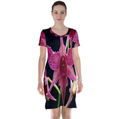 Orchid Flower Branch Pink Exotic Black Short Sleeve Nightdress
