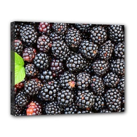 Blackberries Background Black Dark Canvas 14  X 11