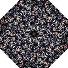 Blackberries Background Black Dark Straight Umbrellas