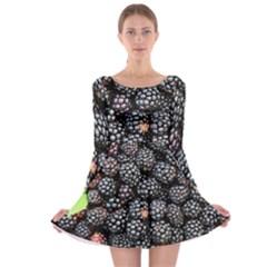 Blackberries Background Black Dark Long Sleeve Skater Dress