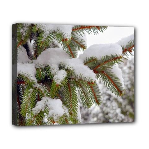 Brad Snow Winter White Green Deluxe Canvas 20  X 16