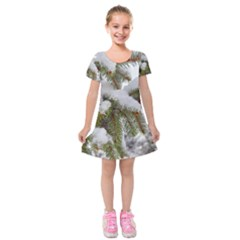 Brad Snow Winter White Green Kids  Short Sleeve Velvet Dress