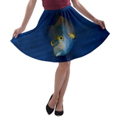 Fish Blue Animal Water Nature A Line Skater Skirt