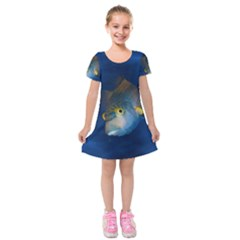 Fish Blue Animal Water Nature Kids  Short Sleeve Velvet Dress