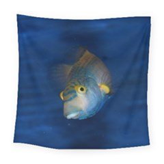 Fish Blue Animal Water Nature Square Tapestry (large)