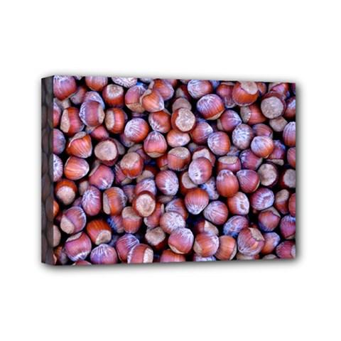 Hazelnuts Nuts Market Brown Nut Mini Canvas 7  X 5