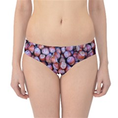 Hazelnuts Nuts Market Brown Nut Hipster Bikini Bottoms