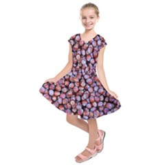 Hazelnuts Nuts Market Brown Nut Kids  Short Sleeve Dress